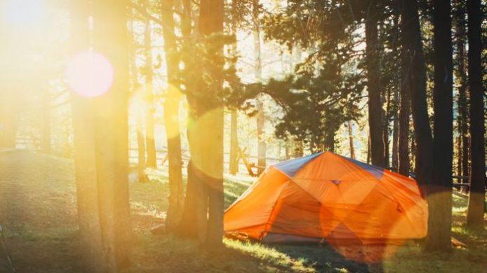 camping houten en omgeving